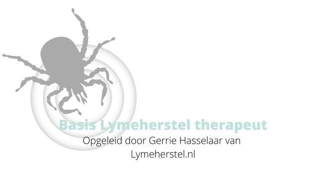 Lymeherstel therapeut